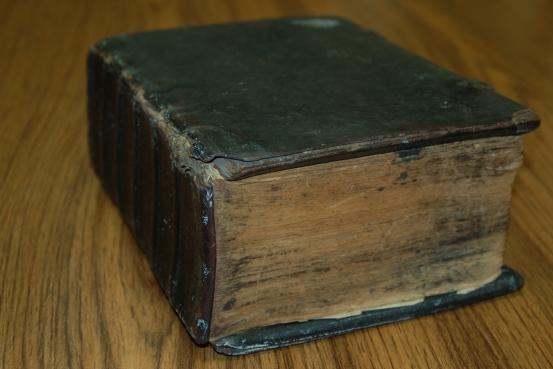 Sauer Bible